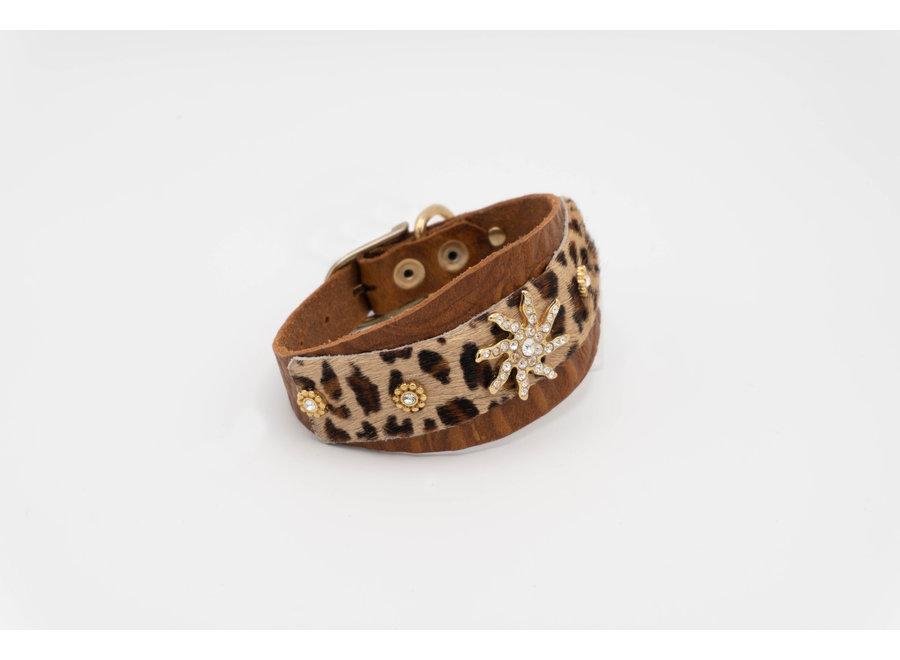 Leopard Ivy Brown Collar  M