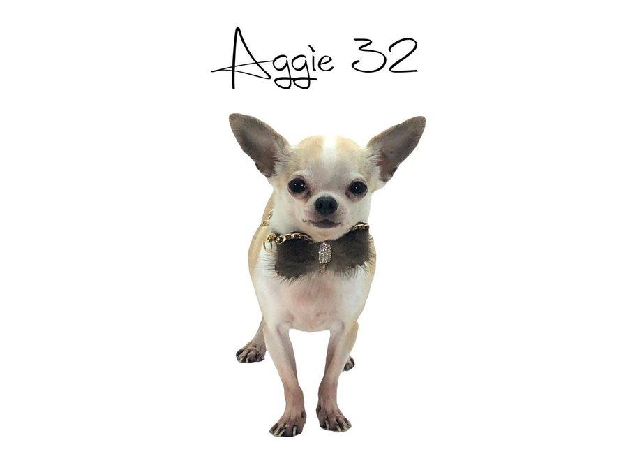 Honden halsband Aggie Brown