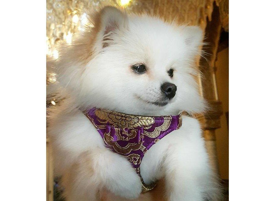 Satin Tibet Seduction Purple harness