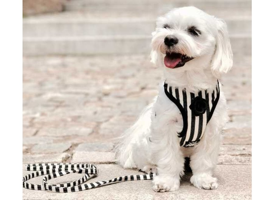 Striped harness