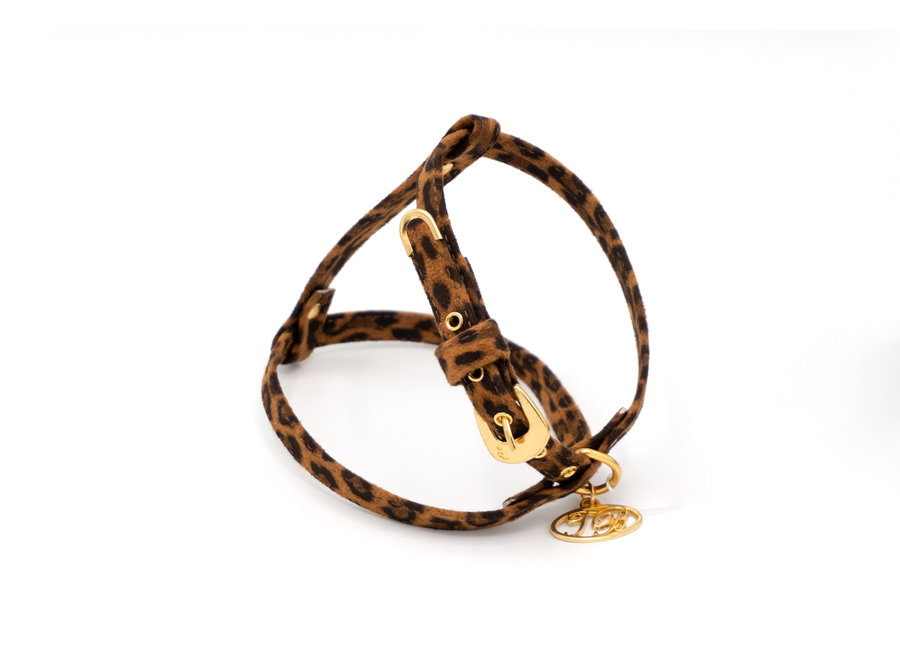 Avis Leopard harness
