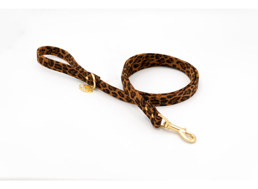 Avis Big leash