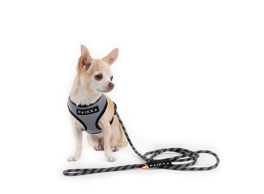 Visibility Rope Leash