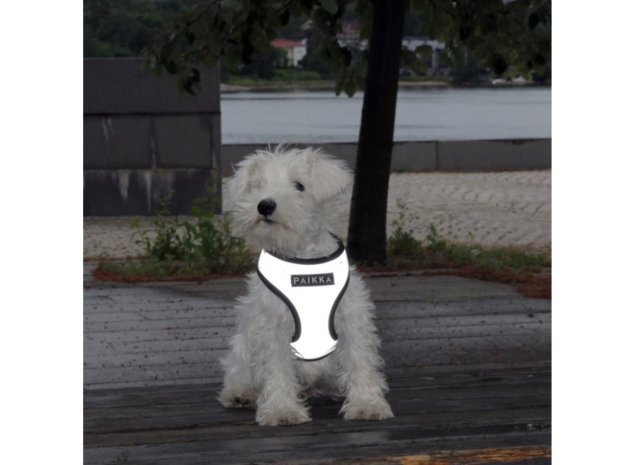 Visibility Harness