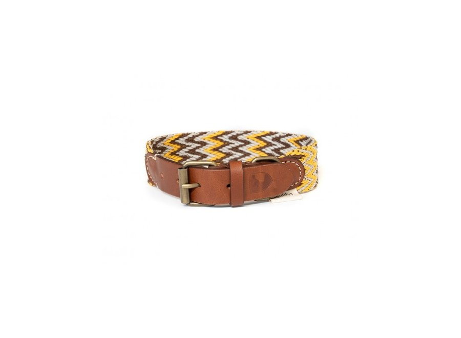 Peruvian Gold dog collar