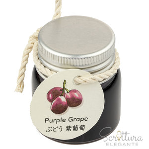 Gazing Far Gazing Far fountain pen ink - Purple Grape - sample