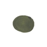 Leyte  - sample