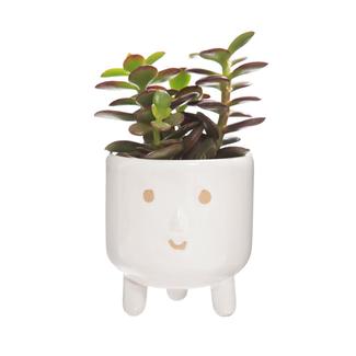 Sass & Belle Little Smiley face glaze leggy planter