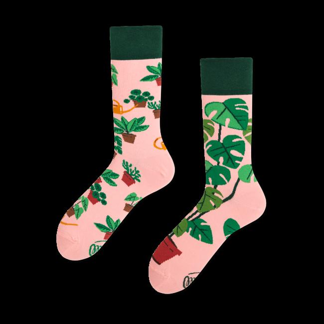 Sokken Plant Lover