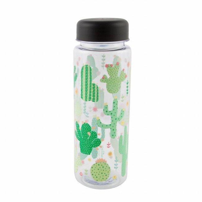 Water bottle cactus