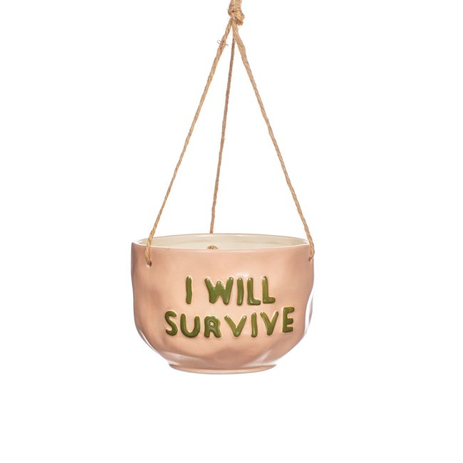 Will survive hanging planter