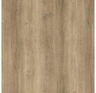 VIVA Serie Dry Back  BONEGA L1304