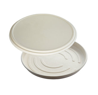 Pizza Box Bagasse