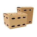 PAPSTAR Kartonnen Frietboxen