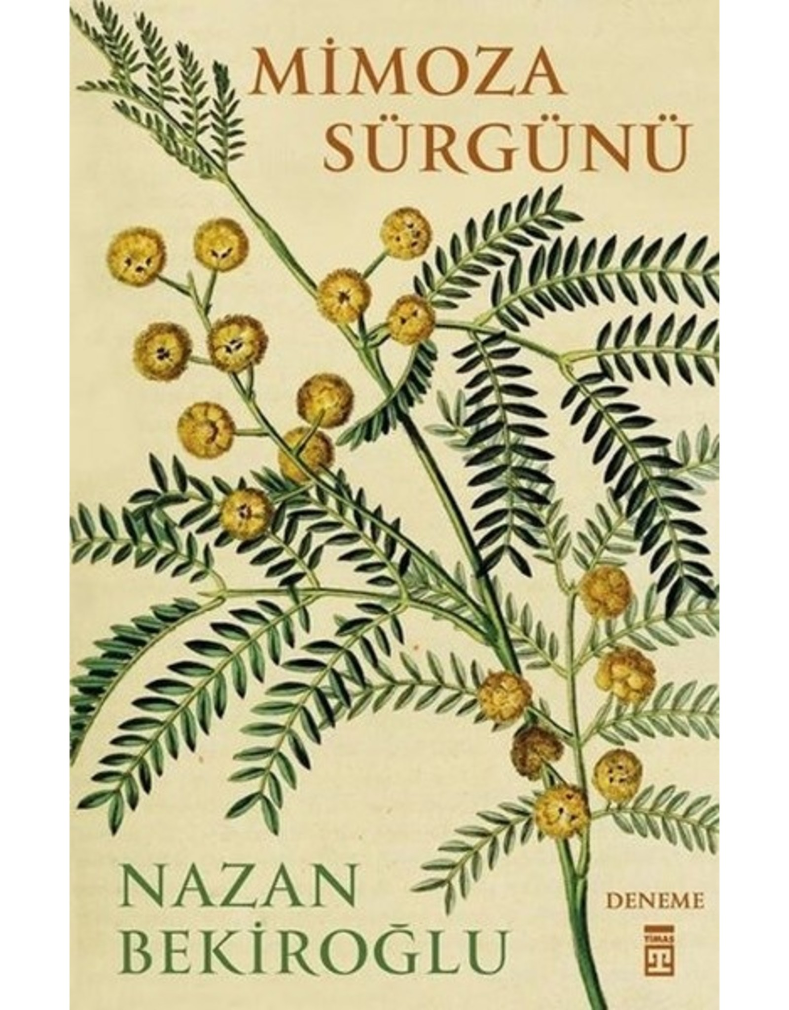 Nazan Bekiroğlu Mimoza Sürgünü
