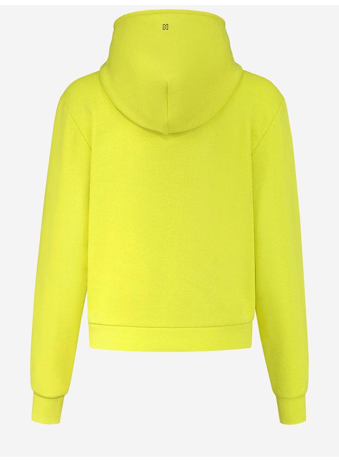 Anorak sweat hoodie (poison green)