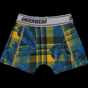 VINGINO Vingino jongens 2-pack boxershort capri blue checked
