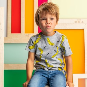 MINI REBELS jongens t-shirt grey melange banaan