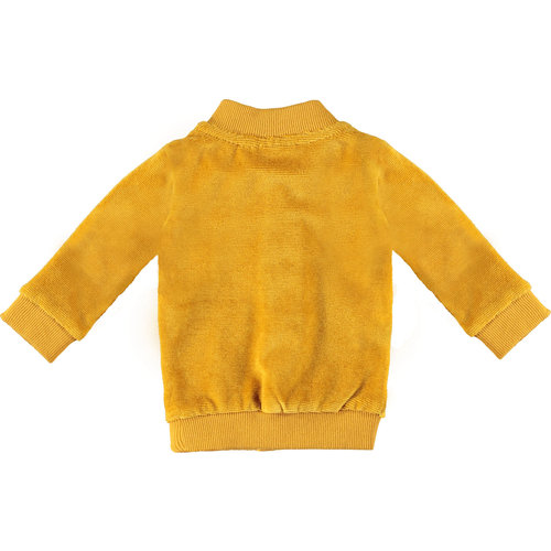 BAMPIDANO Bampidano jongens vest ocre yellow