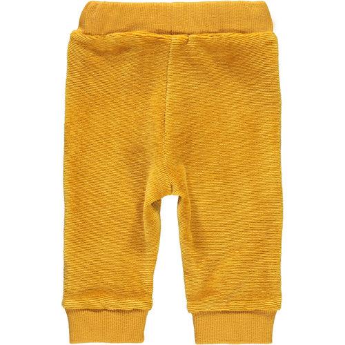 BAMPIDANO Bampidano jongens broek ocre yellow