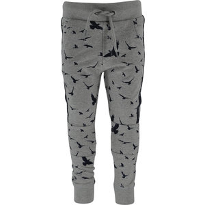 BORN TO BE FAMOUS jongens broek grey melange bird print tino