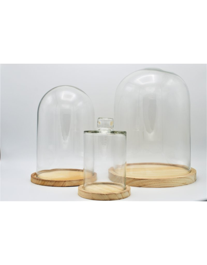 . Glass dome large 17x25cm