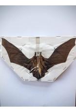 . Opgezette Pipistrellus species (vleermuis) vliegend