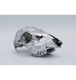 . Roe skull silver