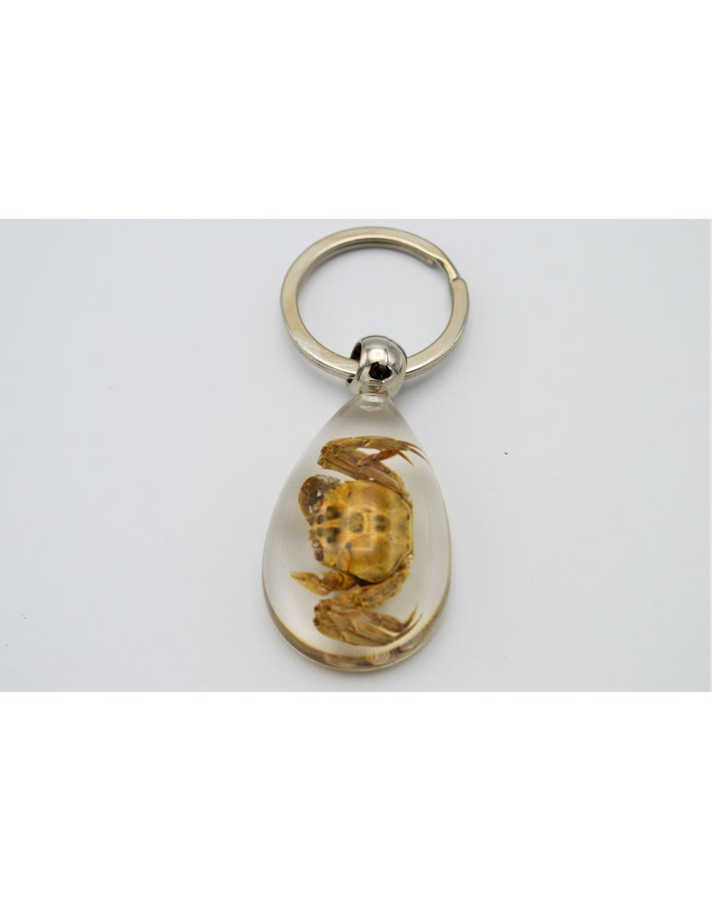 . Insects keychain #5