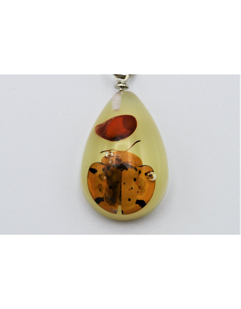 . Insects keychain #7