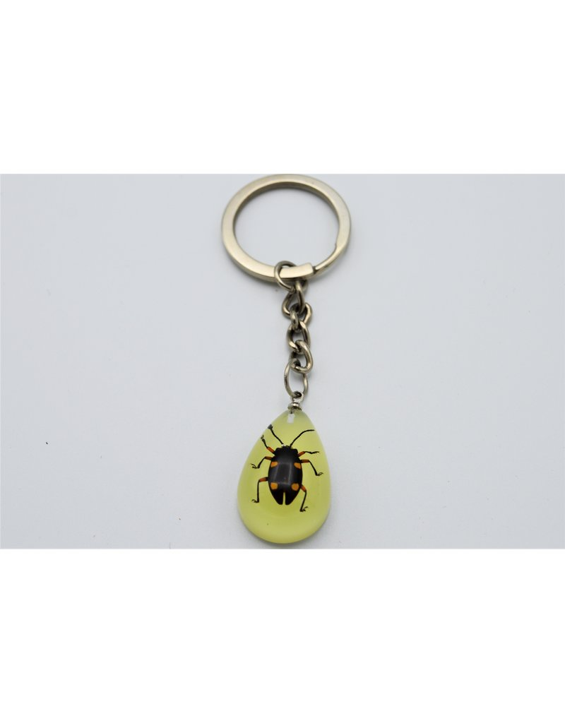 . Insects keychain #9