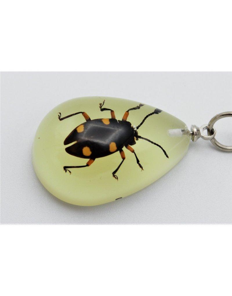 . Insecten sleutelhanger #9