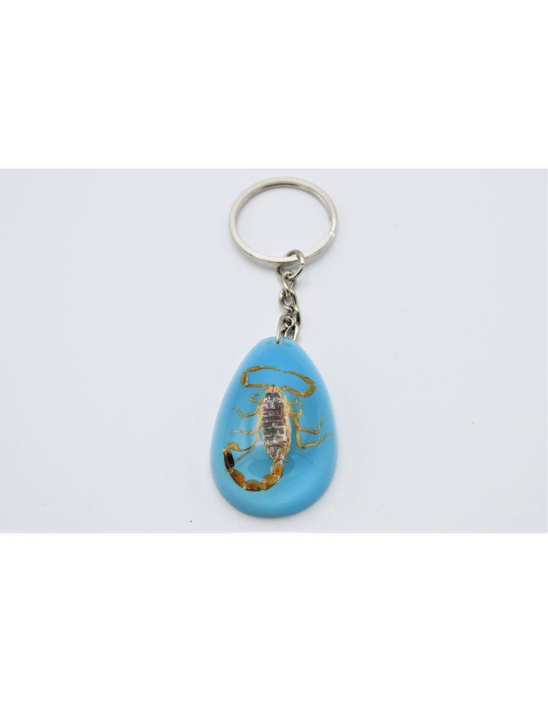 . Insects keychain #11