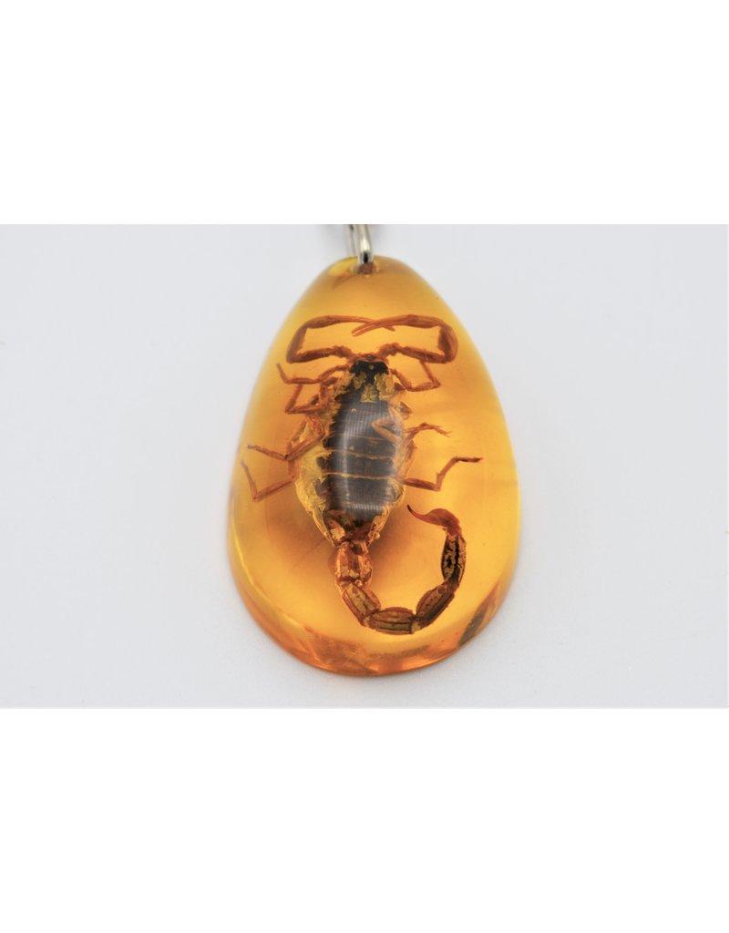 . Insecten sleutelhanger #12
