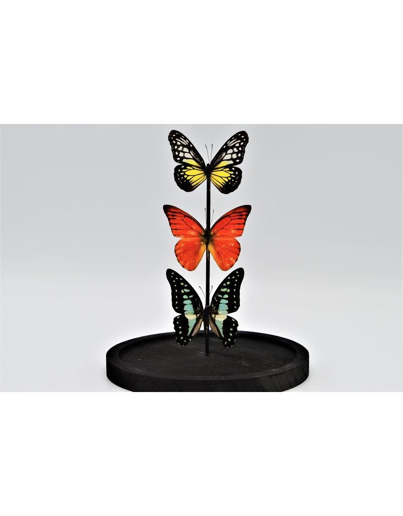 Nature Deco Stolp met 3 vlinders 21 x 14cm