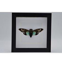 Nature Deco Toseana Splendida in luxe 3D lijst