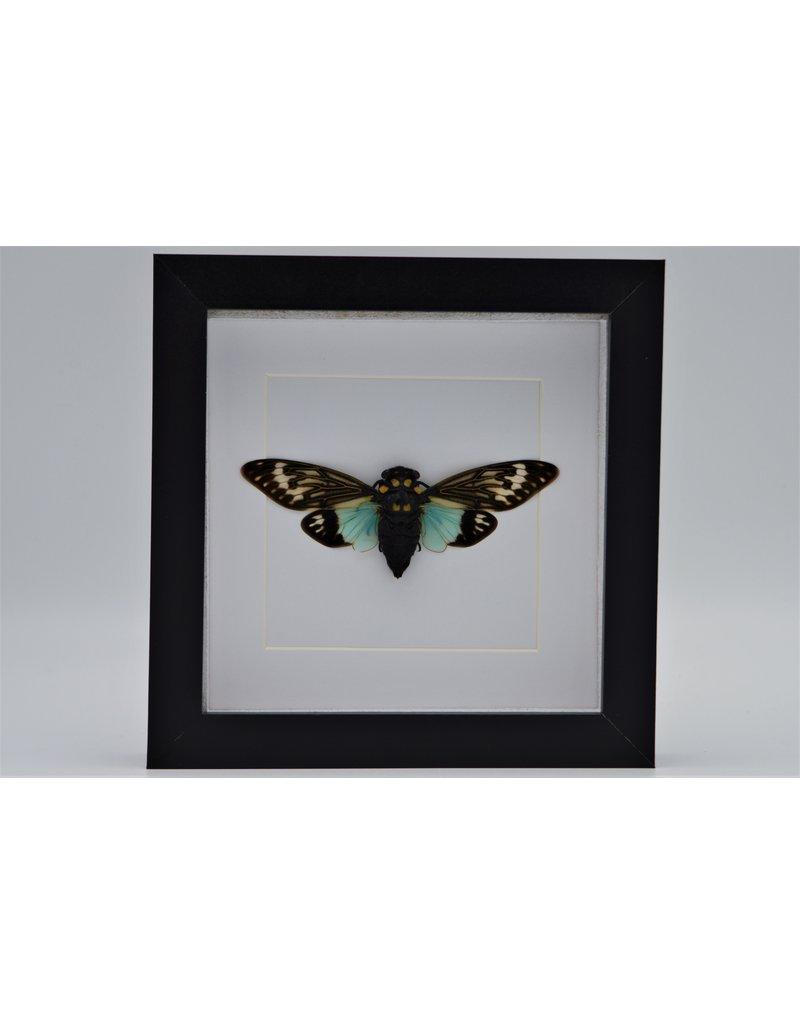 Nature Deco Toseana Splendida in luxe 3D lijst 17 x 17cm