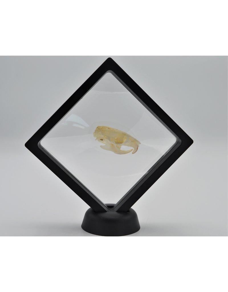 . Plastic folie lijst  met voet 11 x 11cm
