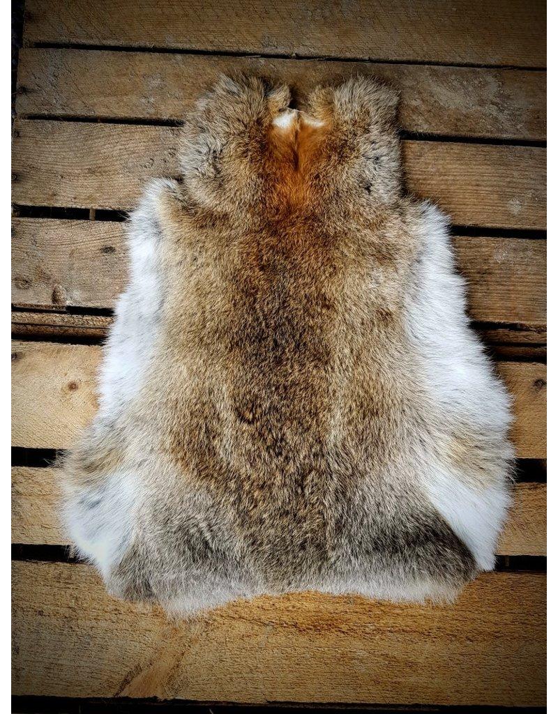 . Rabbit skin wild color
