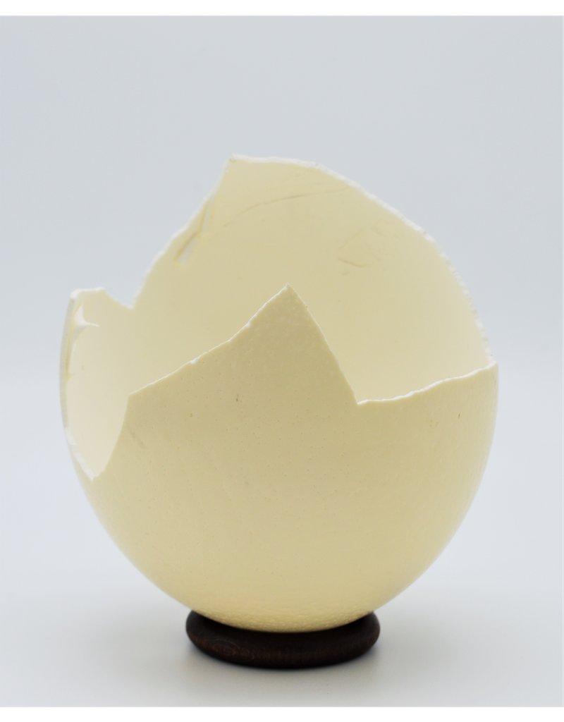 . Broken ostrich egg