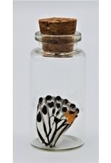 Nature Deco Vlinder vleugel wensflesje willekeurig