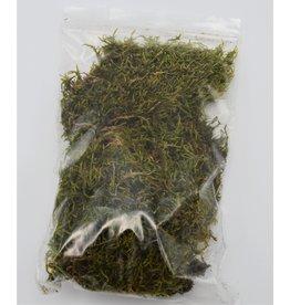 . Dried moss