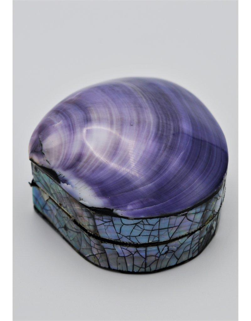. Shellbox purple