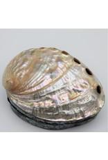 . Schelpendoosje Abalone