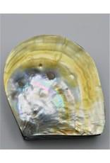 . Schelpendoosje parelmoer/geel