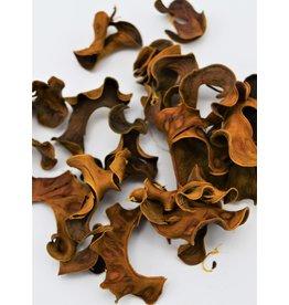 . Dried decoration #1