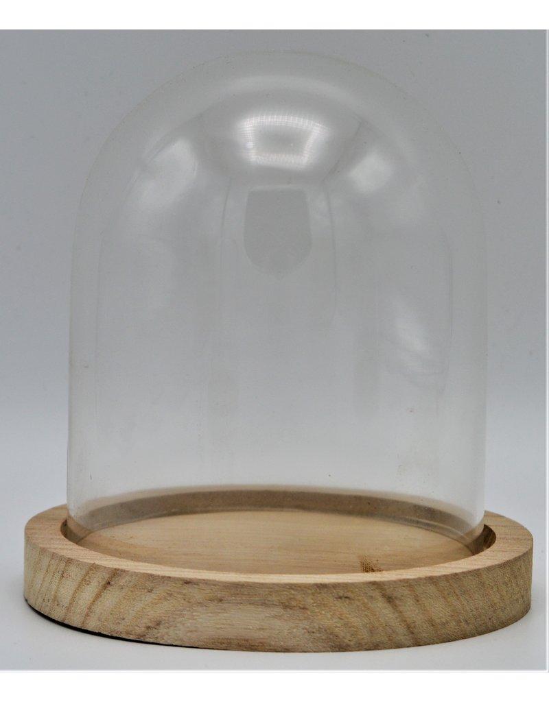 . Glass dome small