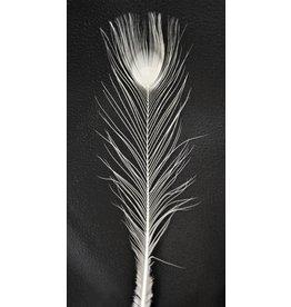. Witte pauwenveer