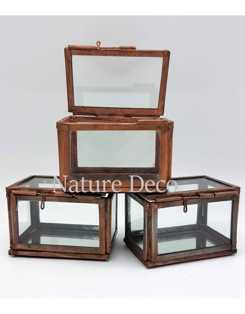 . Vitrine box brons small