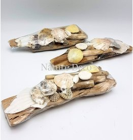 . Schelpen op hout